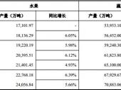 2015-2020年中国洋葱市场分析与行业调查报告